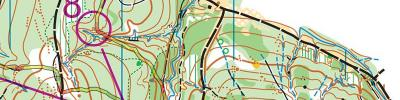 Orienteering, easy (EYOC2018/M16long) (04/05/2019)